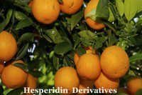 Diosmin Hesperidin Derivativ