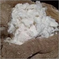Egyptian Raw COtton