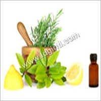 Essential Oil Fragrances