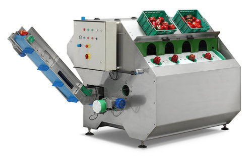 Onion Peeling Machines
