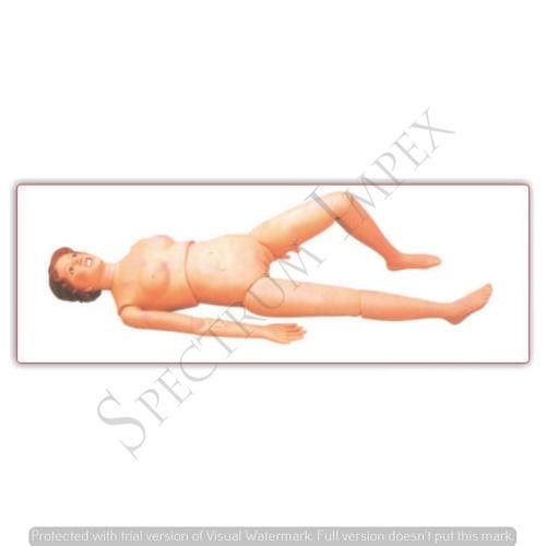 Nursing Training Manikin (Basic)