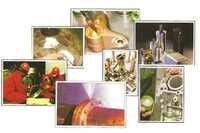 Vaccum Plant