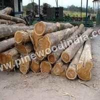 Non Ivory Coast Wood