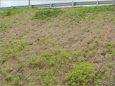 Coir Erosion Control Blanket