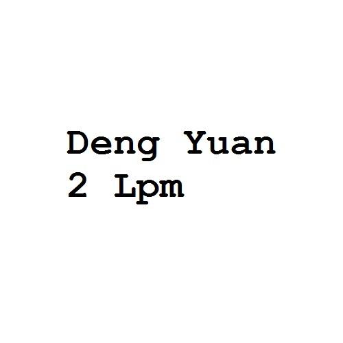 Deng Yuan 2 Lpm Pump