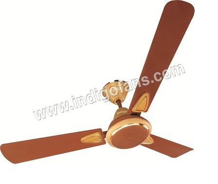 Gloriya 2 Golden Ceiling Fans