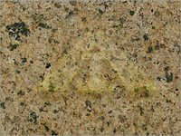 French Brown Granite