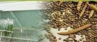 Ho Sale Bulk Guar Gum Powder 400 Mesh Price