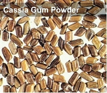 Cassia Tora Powder (Cassia Gum Powder)