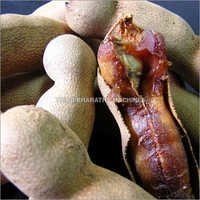 Tamarind Seed Gum For Cosmetic