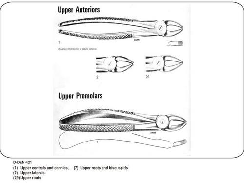 Upper Anteriors and Upper Premolars