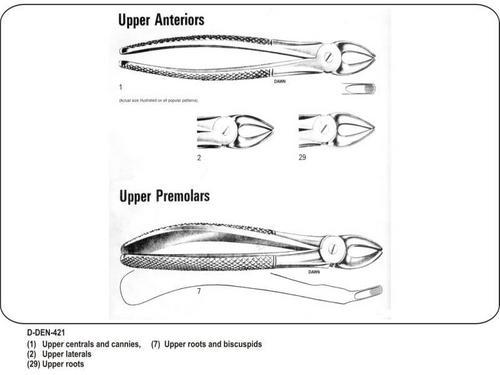 Upper Anteriors and Upper Premolars