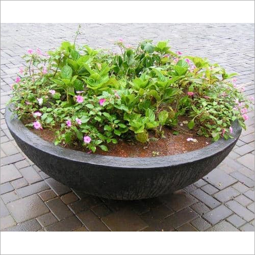 Big Bowl Planter