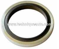 Manufacturer Of Hyd. Plate Bolt Sealing Washer Big