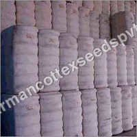 Organic Cotton Bales