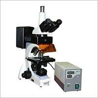 Trinocular Fluorescence Microscope