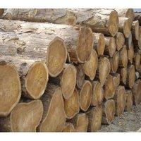 Teak wood Round Log