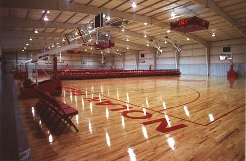 Tigerwood Sports Flooring