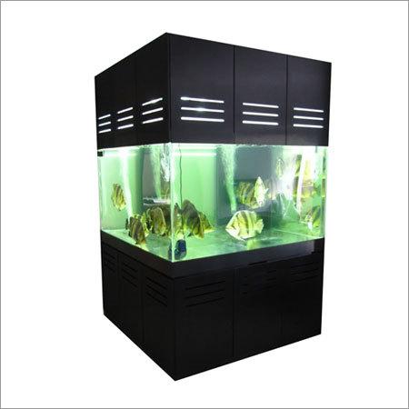 Fresh Water Aquarium