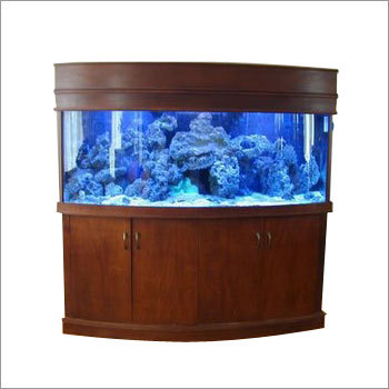 Beautiful Aquariums
