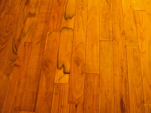 Commercial Hardwood Floor