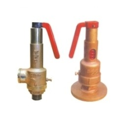 Bronze Spring Loaded POP Type Safety Valve