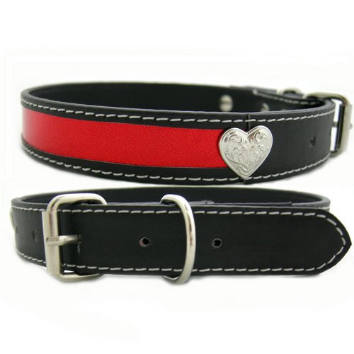 Dogs Collars Belts