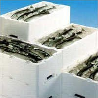 Expandable Polystyrene Packaging