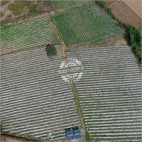 Solar Drip & Sprinkler Irrigation