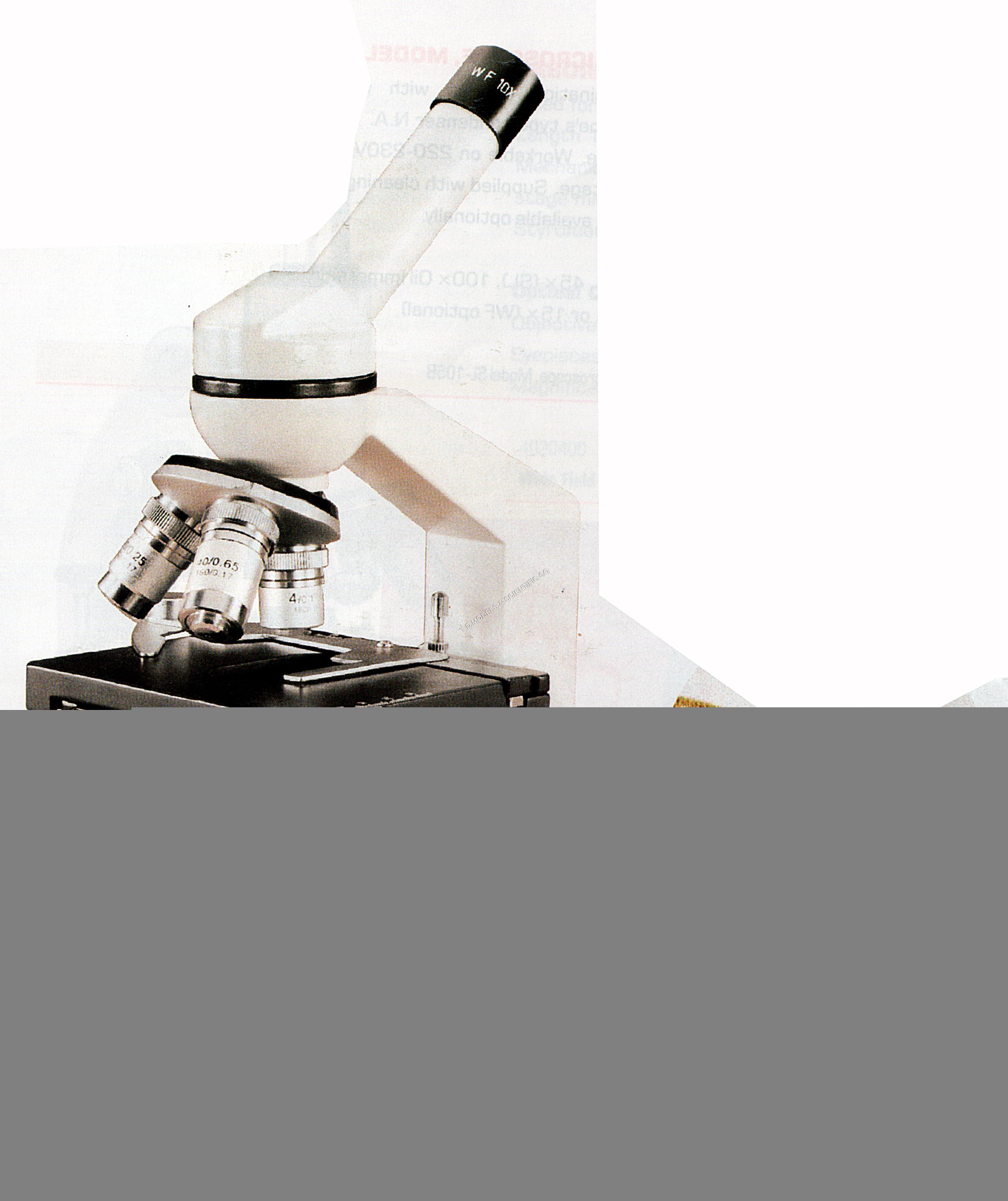 INCLINED PATHOLOGY MICROSCOPE MODEL HL 110