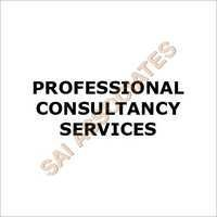 Professional Consultancy Service