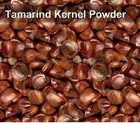 Tamarind Kernel Powder Printing Thickner