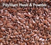 Pharma Grade Wholesale Psyllium Husk Powder