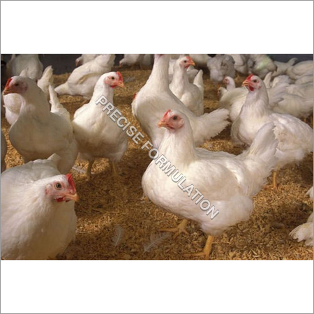 NaDcc Tablet For Poultry Farm