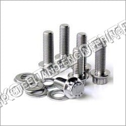 Stainless Steel 304 Nut