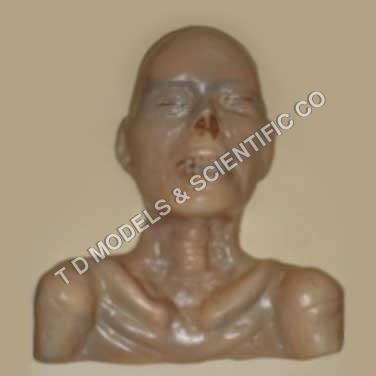 Mumification
