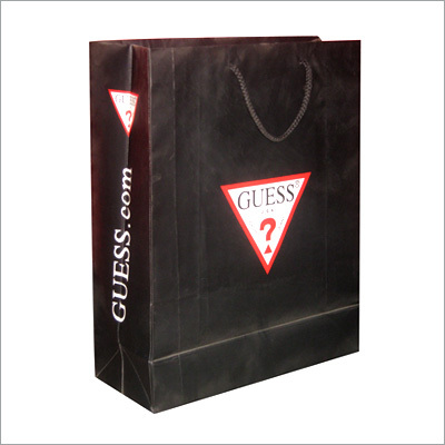 Shopping Paper Packaging Bags