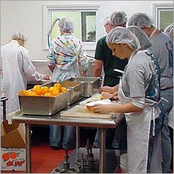 Food Processing Consultants