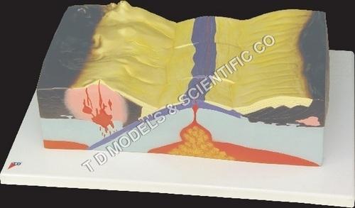 PLATE TECTONIC MODEL