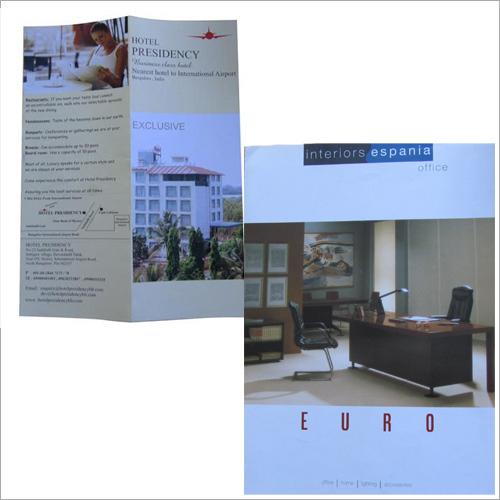 Designing Catalogue, Logo, Web