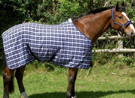 Horse Summer Rugs
