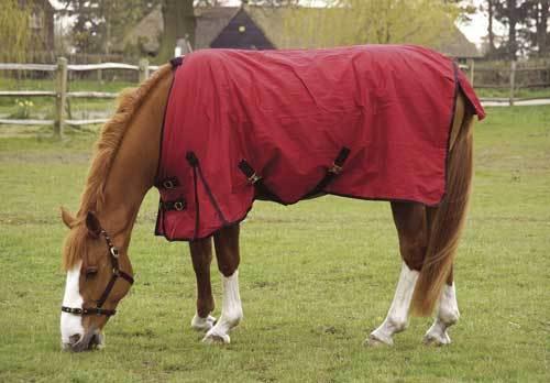 Horse Turnout Rain Sheets