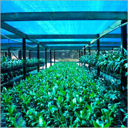 Ecofriendly Agro Shade Net