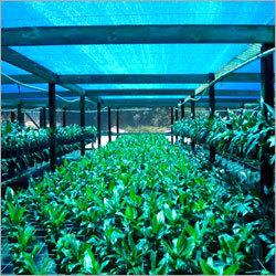 Ecofriendly Agro Shade Net