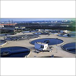 Biodiesel Pour Point Depressant