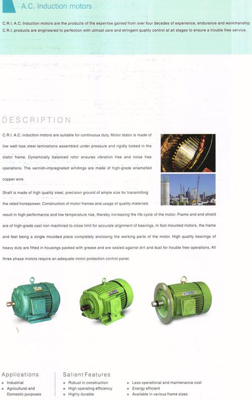 Ac Induction Pumping Motor