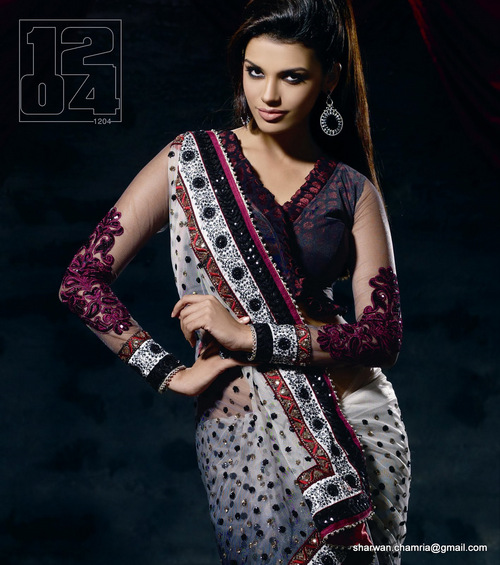 Doulble Color Net Saree