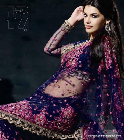 Net Saree with Designer Blouse