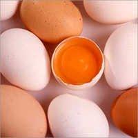 Egg Flavour