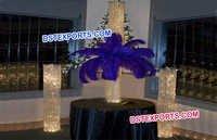 Wedding Fully Crystal Pillars